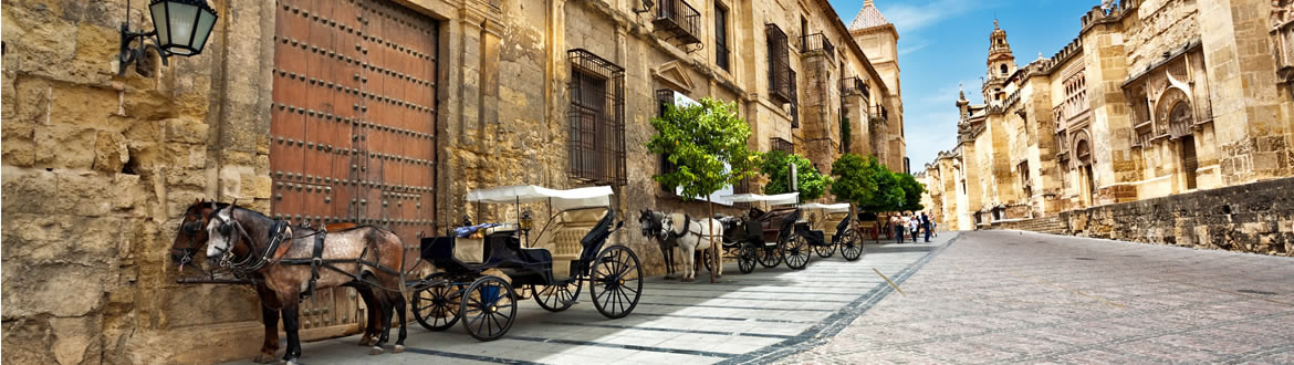 Spain: Andalusia, Mediterranean Coast and Madrid, classic tour